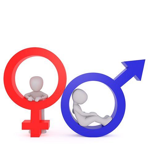 Women, Men & Too Much Estrogen